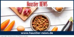 Online-Magazin haustier-news.de