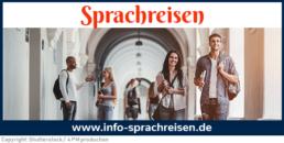 Online-Magazin info-sprachreisen.de